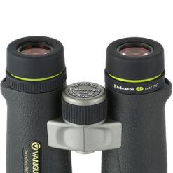 نمای عدسی های چشمی و سیستم فوکوس دوربین ونگارد Endeavor ED 8X42